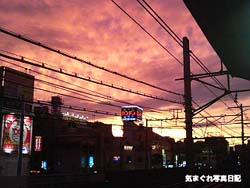 20060808yuyakelm.jpg