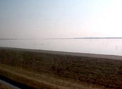 20070212kashi03.jpg