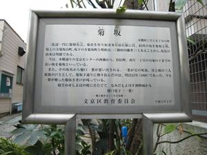 20101219_1812.jpg