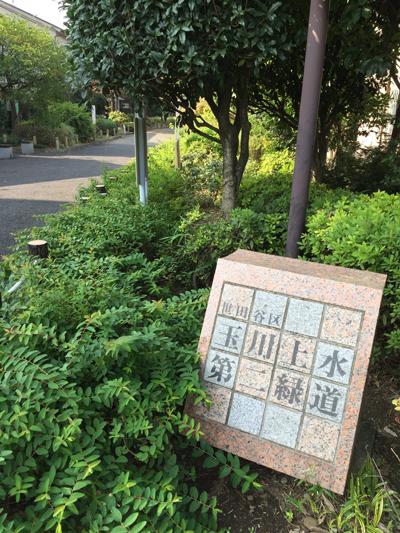 20151022_1042.jpg