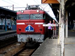 20080101_nenga4801.jpg