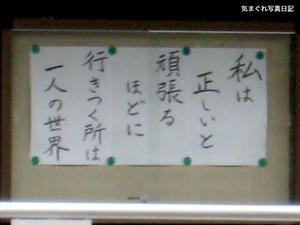 20080509_6730.jpg
