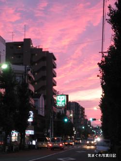 20081011_8348.jpg