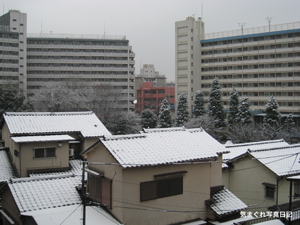 20100218_4219.jpg