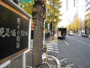 20101219_1803.jpg