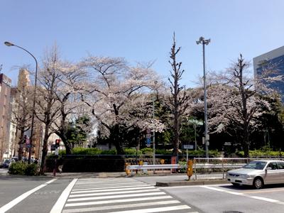 20130321_0450_m.jpg