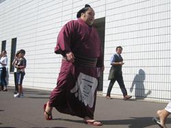 chiyoohtori_2589.JPG